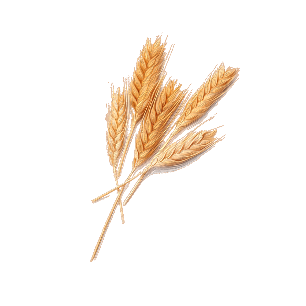 Grano - BeC natura